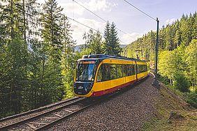 Eine Stadtbahn der Albtal-Verkehrs-Gesellschaft fährt durch das Murgtal. Rechts und links von den Gleisen stehen hohe Nadelbäume. Der Himmel ist blau und leicht bewölkt.