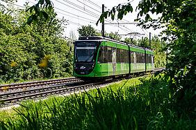 Grüne Stadtbahn im Wald.
